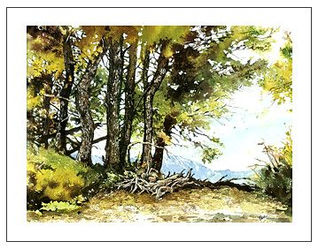 1000+ images about watercolor lessons on Pinterest | How to ...