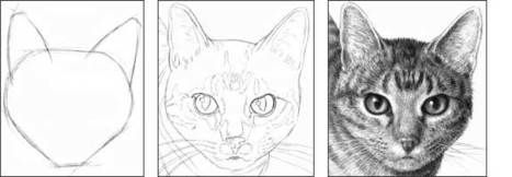 Step by Step Cat Drawing Tutorial | Drawing and Painting Tutorials | Scoop.it