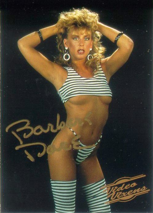 Barbara Dare Hand Signed Autographed Video Vixens Series