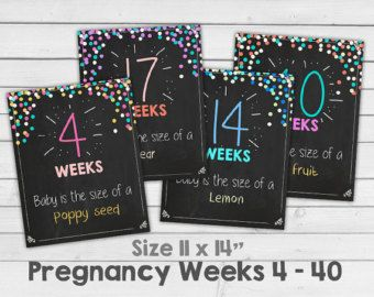 Pregnancy weeks Pregnancy chalkboard week by by Anietillustration