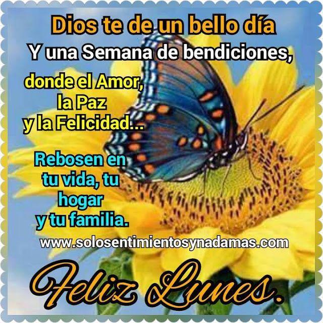 Dios Te De Un Bello Dia Feliz Lunes Feliz Martes Bendiciones