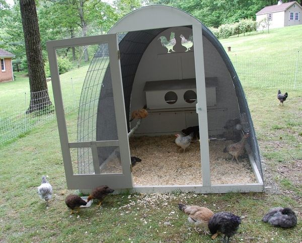 Chicken coop idea...simple supplies needed. 483