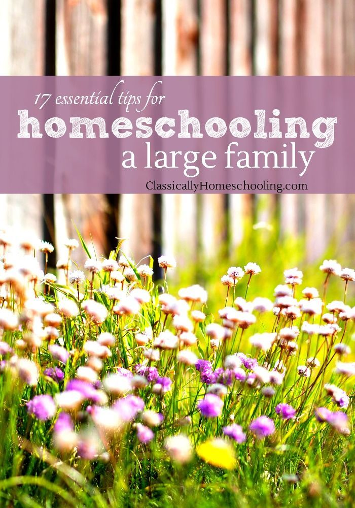 17 essential and awesome tips for homeschooling a large family or multiple ages