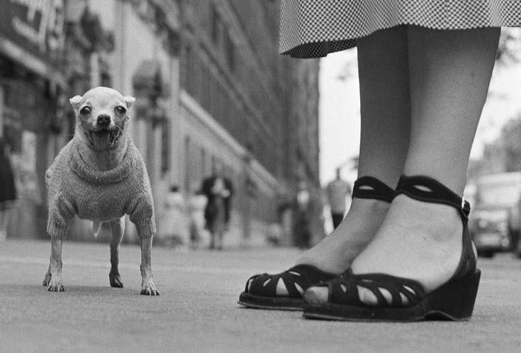 New York City, USA. 1946. © Elliott Erwitt / Magnum Photos