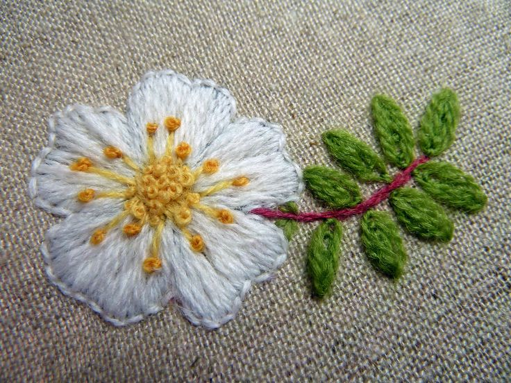 Embroidered Burnet Rose (The Scots Rose)