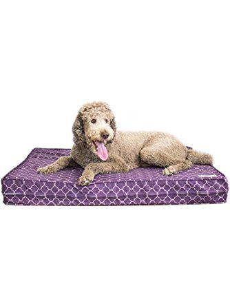 Orthopedic Dog Bed 5 Quot Thick Supportive Gel Enhanced