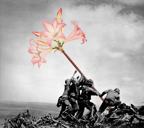 Artista substitui armas por flores em fotos antigas