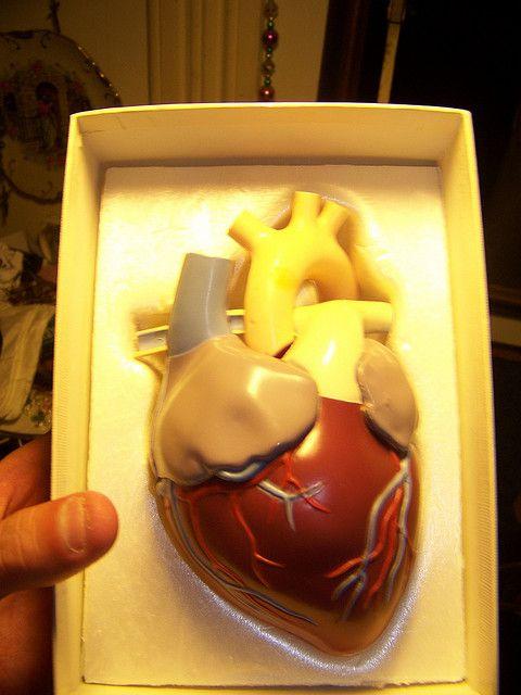 Heart Troubles U0026 Itu0027s Alarm Signals