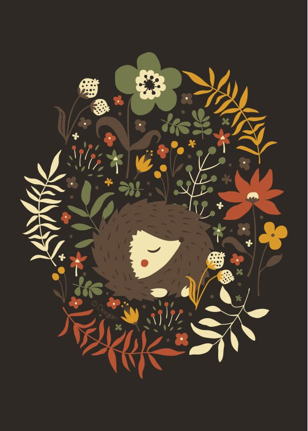 Cute Hedgehogs by Anna Deegan, via Behance