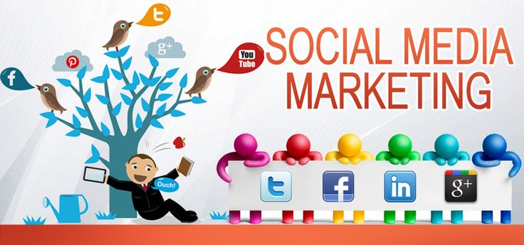 Get Online social media marketing courses in delhi & NCR from PIMS INDIA