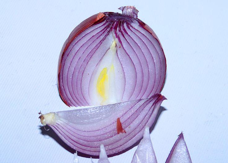 Ποιο λαχανικό κρύβει στα σπλάχνα του αντισηπτικό τσιρότο;