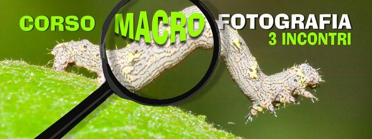 corso fotografia macrofotografia
