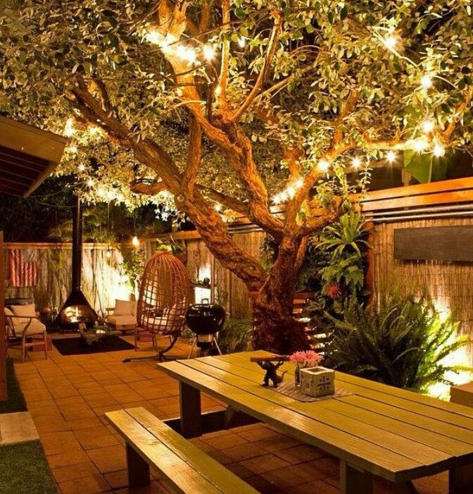 Jardim secreto, no seu quintal