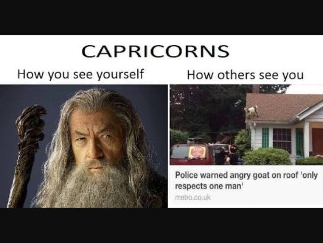 Capricorn meme. How you see yourself vs how others see you. Police warned angry goat.
