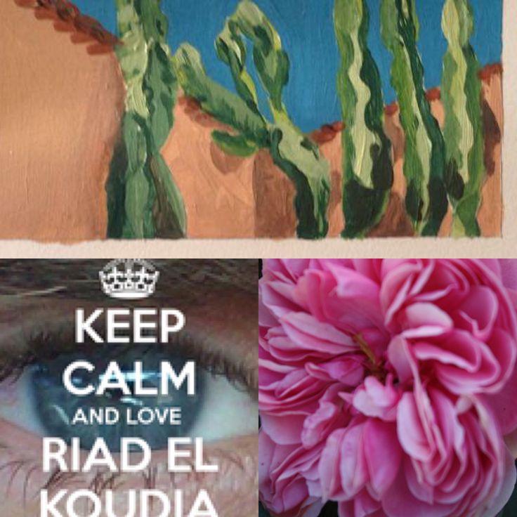 Riad El koudia