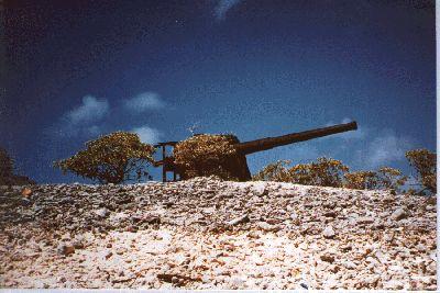Jarvis Island WW2 | Big Gun on the 'Tail' of the Manatee By sasroodkapje