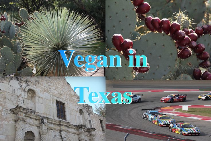 Vegan in Texas Travels