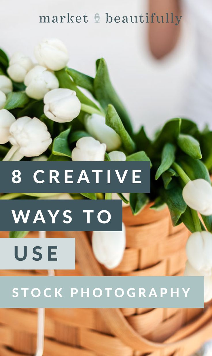 I recently posted freeeee stock pictures for your business or blog that you can use because I love you and all the hard work you put into your website   blog. Then I thought maybe devoting a whole blog post on the number of ways to use stock photography images within your site would be…