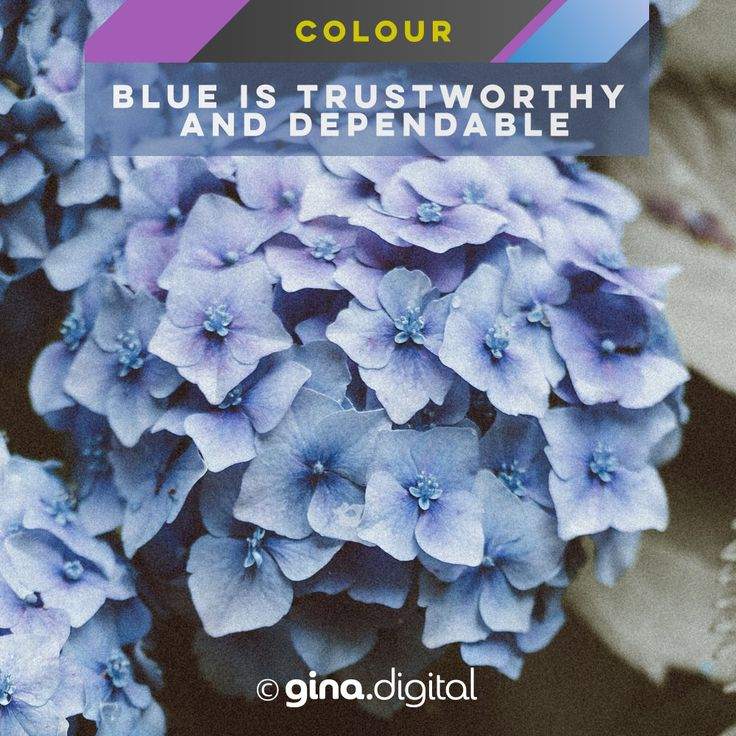 Blue is trustworthy and dependable. #ginadigital #blue #colormeanings #color