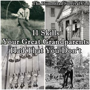 The Homestead Survival | 11 Skills Your Great Grandparents Had That You Don't | Homesteading - http://thehomesteadsurvival.com