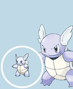 pokemon edit evolution Squirtle blastoise wartortle starter edit:pkm mega blastoise