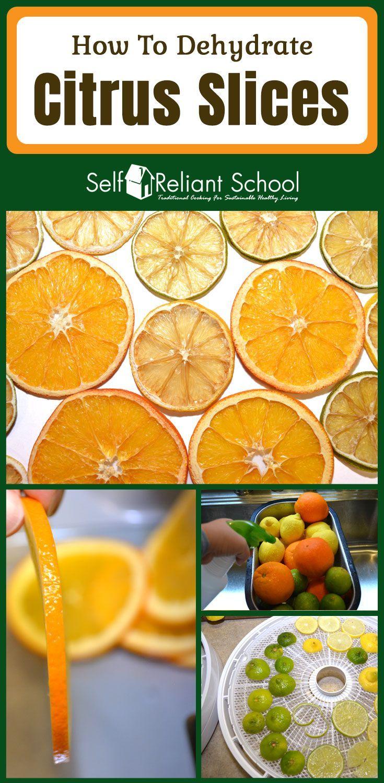Download]_p. D. F my nesco snackmaster pro dehydrator recipe book 100….