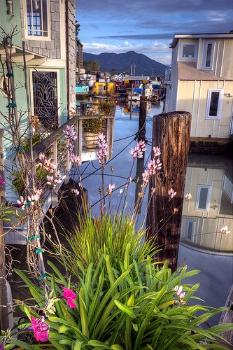 """Lovely Glimpse of Sausalito Houseboats ... A great little spot to do a """"self shore excursion"""" while in San Francisco."""