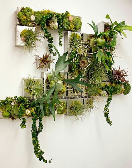 Plant Decoration In Living Room: 25+ Best Ideas About Wall Planters On Pinterest