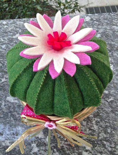 Cactus cuscino della suocera con fiore rosa e bianco