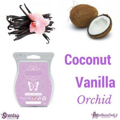 nouvelles cire parfumee Scentsy Alléchant zeste d'orange, lait de coco et orchidée de vanille crémeuse. https://pascalmessina.scentsy.fr/shop/p/38670/barre-scentsy-coconut-vanilla-orchid