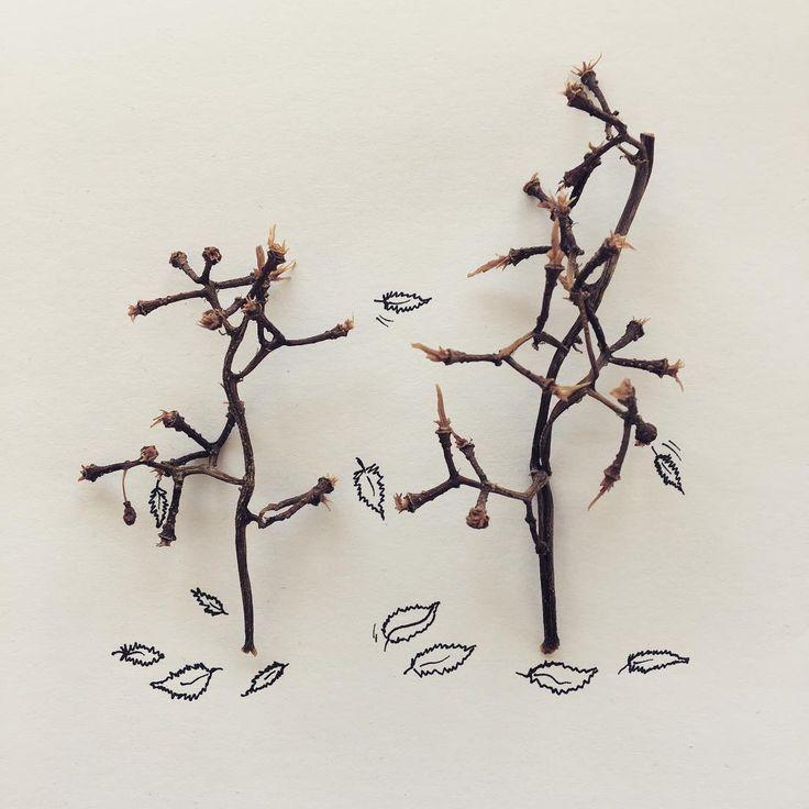 Sonbahar - Autumn #objectart