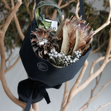 logi plants&flowers - Google 検索
