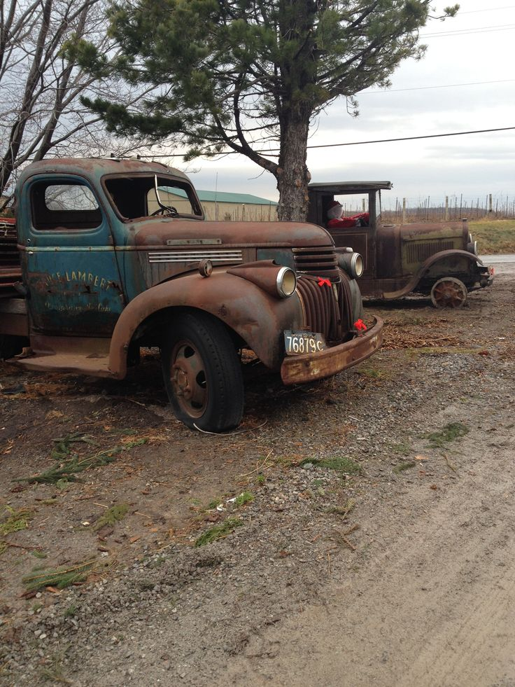 A farmer has his collection of old trucks at the end of his laneway.