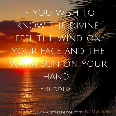 """""""If you wish to know the divine, feel the wind on your face and the warm sun on your hand."""" ~Buddha ..*"""