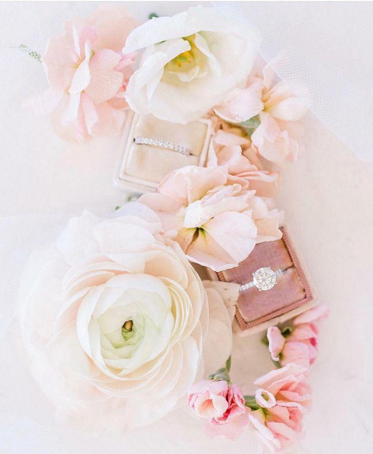 instagram snap love blooms - 735×894