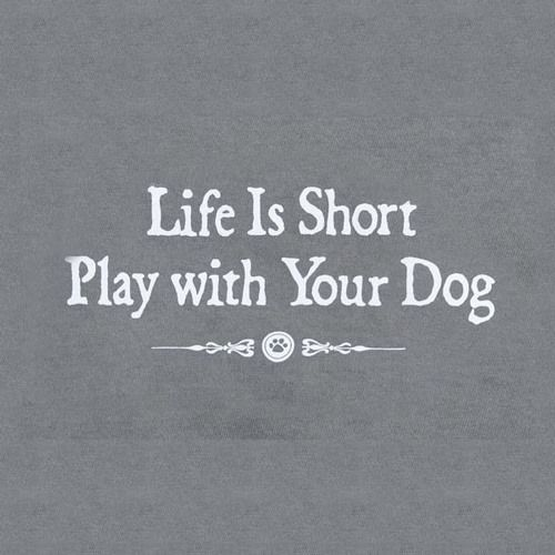 Life Is Short, Play With Your Dog – Black Friday Amazon Deals For Dogs http://www.pindoggy.com/pin/9617/