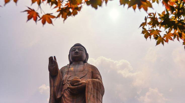 Giants of Seonggoksa Temple