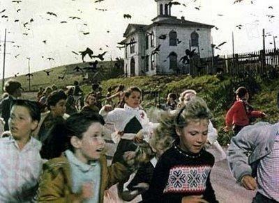 """""""Les oiseaux"""" Hitchcock"""
