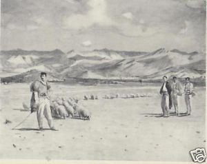 BALKANS 1915: MONTENEGRO. PODGORICA UPON THE ALBANIAN FRONTIER.Old Vintage Print | eBay