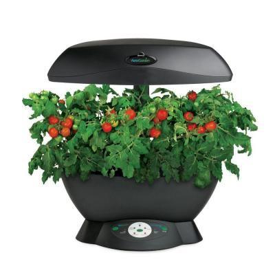 Miracle Gro Aerogarden 6 Indoor Garden With Gourmet Herb 400 x 300
