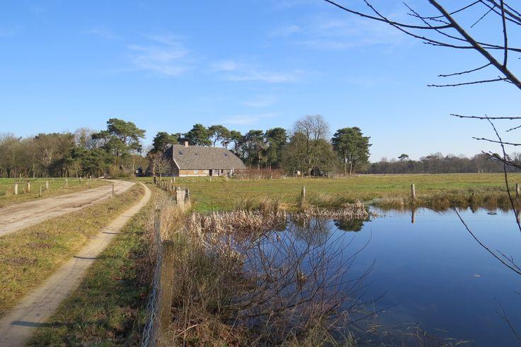 2015-03-08 Nog een prachtig plekje in het Eerder Achterbroek, nabij kasteel Eerde