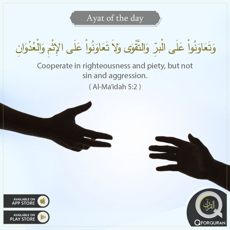 "**AYAT OF THE DAY** ""Cooperate in righteousness and piety, but not sin and aggression."" (Al-Ma'idah, 5:2) #AyatOfTheDay #Quran #QforQuran"