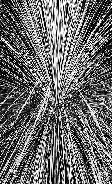 Abstract photography. I would consider this a partially abstract composition, we don't know exactly what this photograph is of but you can get a rough idea once you have looked at the photo for a minute or two.
