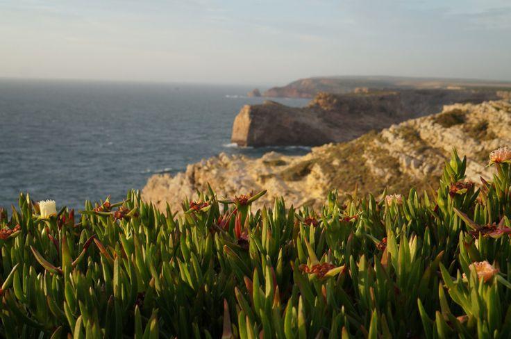 10 melhores praias da Costa Vicentina - Portugal