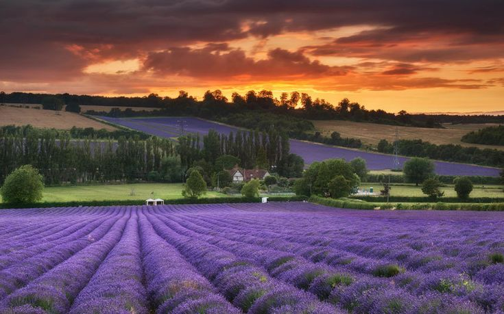 121 Best Kent Images On Pinterest Kent England Beautiful Places And Places To Visit