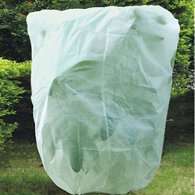 Plant Protection Cover Nonwovenfabrics Uv Stability Guarantee Prevent Frost Burn Rot Proof Easy To Stor Plant Protection Plant Covers How To Grow Taller