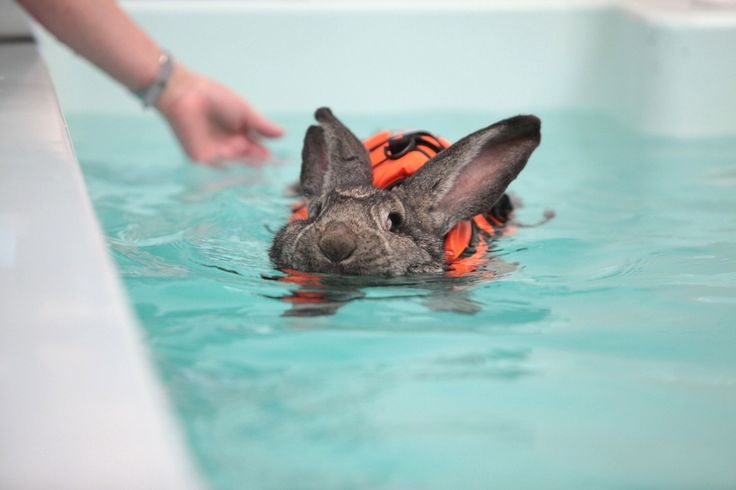 """Work it, Heidi! 