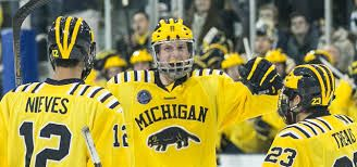 Image result for michigan wolverines max pacioretty