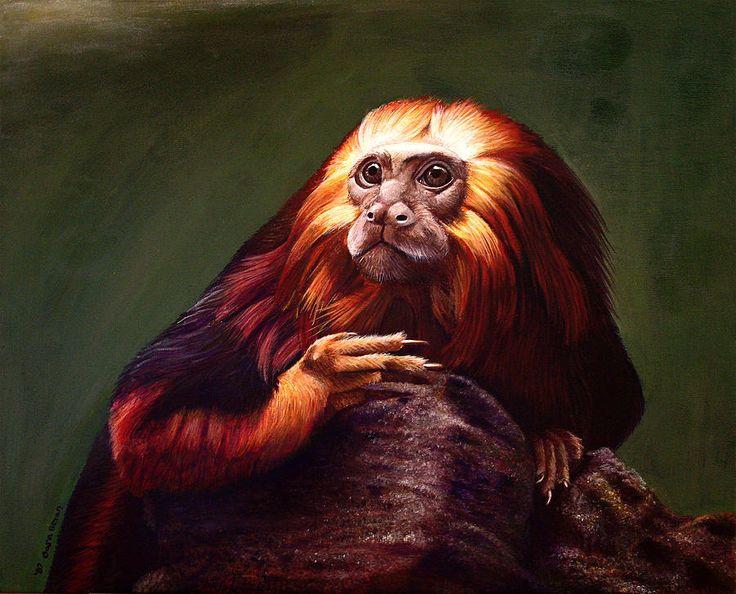 207 best wild art images on Pinterest | Animal paintings ...