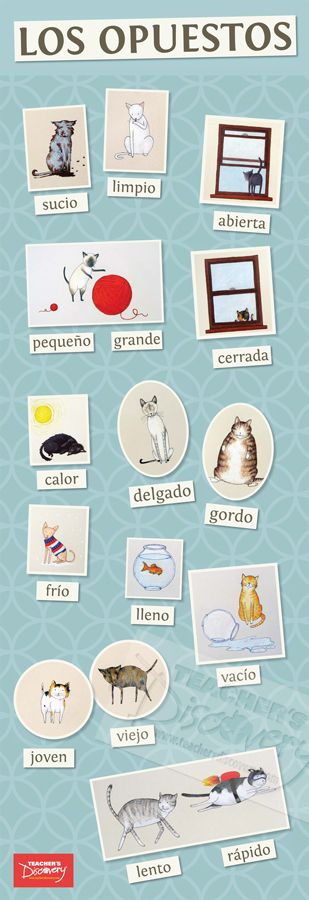 Opposite Cats Spanish Skinny Poster, Classroom Décor: Teacher's Discovery